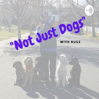 Not Just Dogs