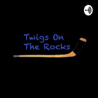 Twigs On The Rocks