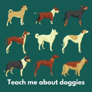 Teach Me About Doggies: Learning about dog training together