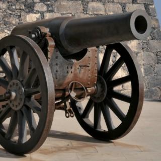 Loose Cannon Politics