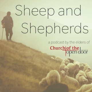 Sheep and Shepherds (Podcast)