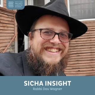 Sicha Insight, Rabbi Dov Wagner