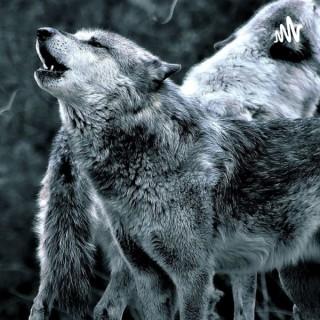 Die Wolfshöhle-Der Podcast über alles
