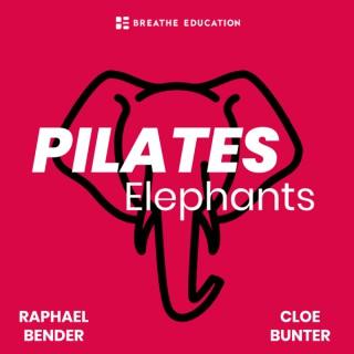 Pilates Elephants