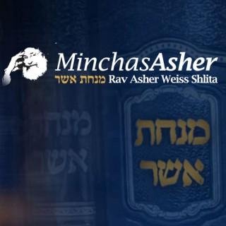 Rav Asher Weiss - Shiurim & Divrei Torah