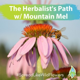 The Herbalist's Path