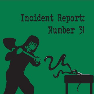 Incident Report Number 31