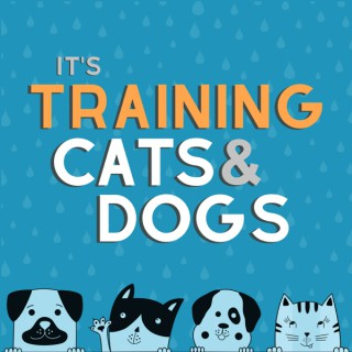 It's Training Cats and Dogs!