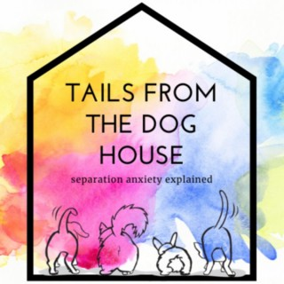 Tails from the Dog House: Separation Anxiety Explained
