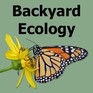 Backyard Ecology