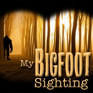 My Bigfoot Sighting
