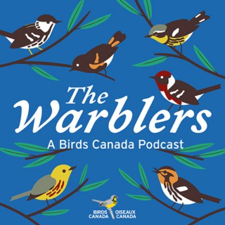The Warblers by Birds Canada