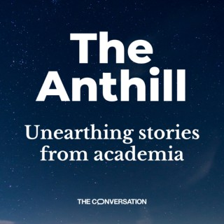 The Anthill
