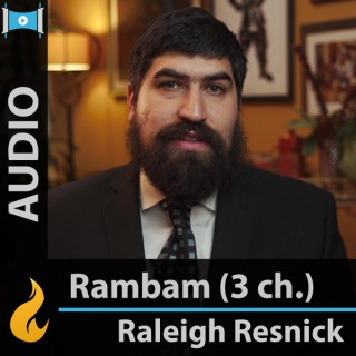 Rambam - 3 Chapters a Day (Audio) - by Raleigh Resnick
