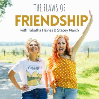The Flaws of Friendship