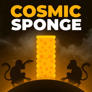 Cosmic Sponge