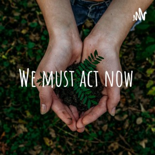 We must act now