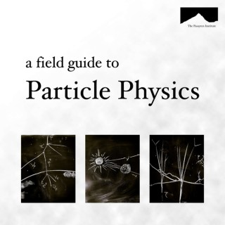 The Field Guide to Particle Physics