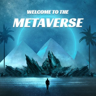 Welcome to the Metaverse